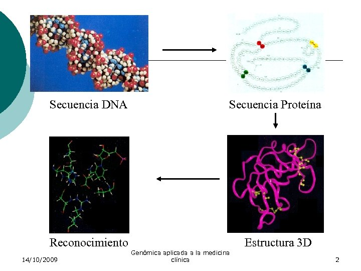 Secuencia DNA Secuencia Proteína Reconocimiento Estructura 3 D 14/10/2009 Genómica aplicada a la medicina