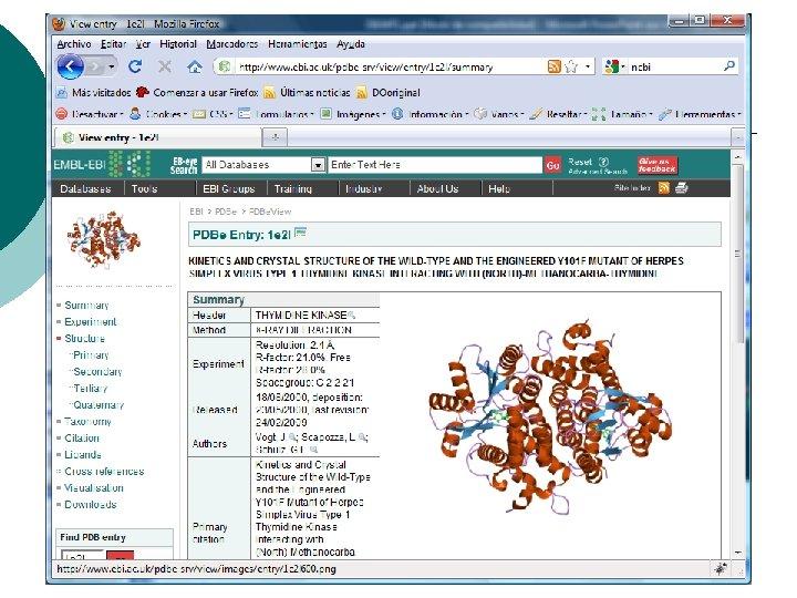 14/10/2009 Genómica aplicada a la medicina clínica 20