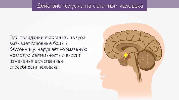 Действие толуола на организм человека При попадании в организм толуол вызывает головные боли и