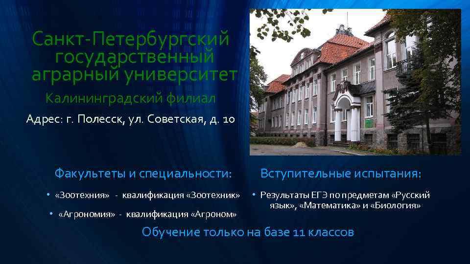 Сын картинки, санкт-петербургский государственный аграрный университет открытка почтовая