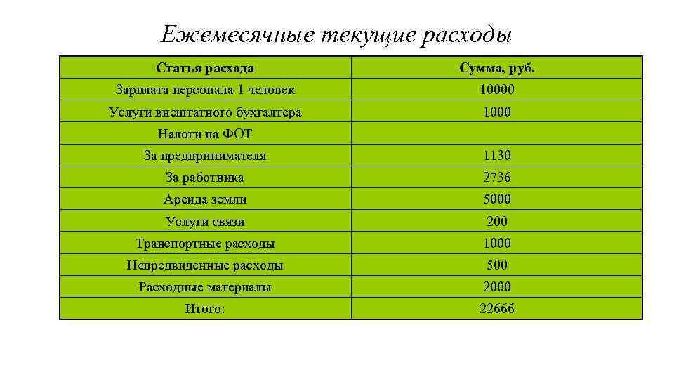 Ежемесячные текущие расходы Статья расхода Сумма, руб. Зарплата персонала 1 человек 10000 Услуги внештатного
