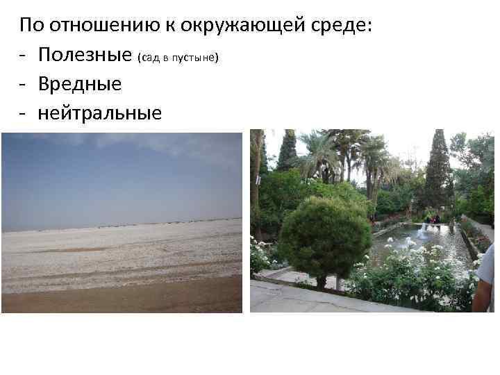 По отношению к окружающей среде: - Полезные (сад в пустыне) - Вредные - нейтральные