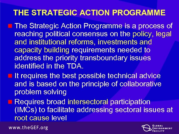 THE STRATEGIC ACTION PROGRAMME n The Strategic Action Programme is a process of reaching