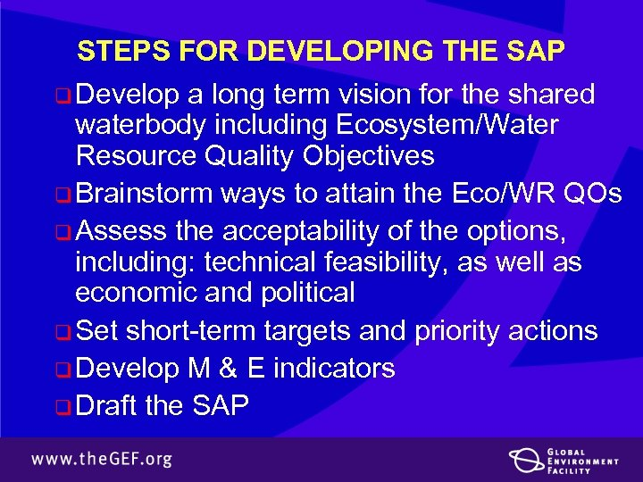 STEPS FOR DEVELOPING THE SAP q Develop a long term vision for the shared