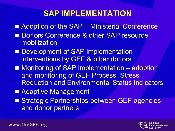 SAP IMPLEMENTATION n Adoption of the SAP – Ministerial Conference n Donors Conference &