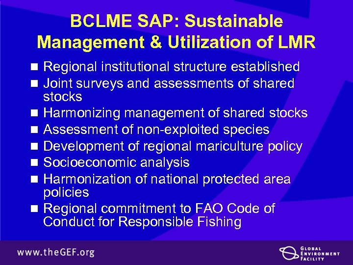 BCLME SAP: Sustainable Management & Utilization of LMR n Regional institutional structure established n