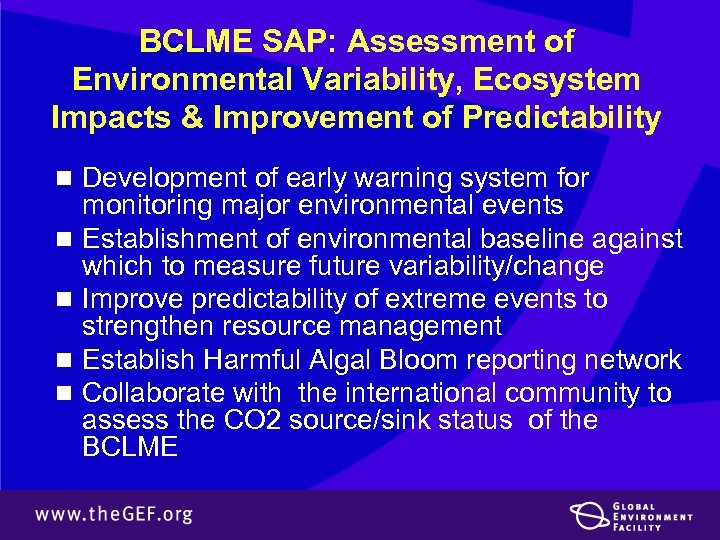 BCLME SAP: Assessment of Environmental Variability, Ecosystem Impacts & Improvement of Predictability n Development
