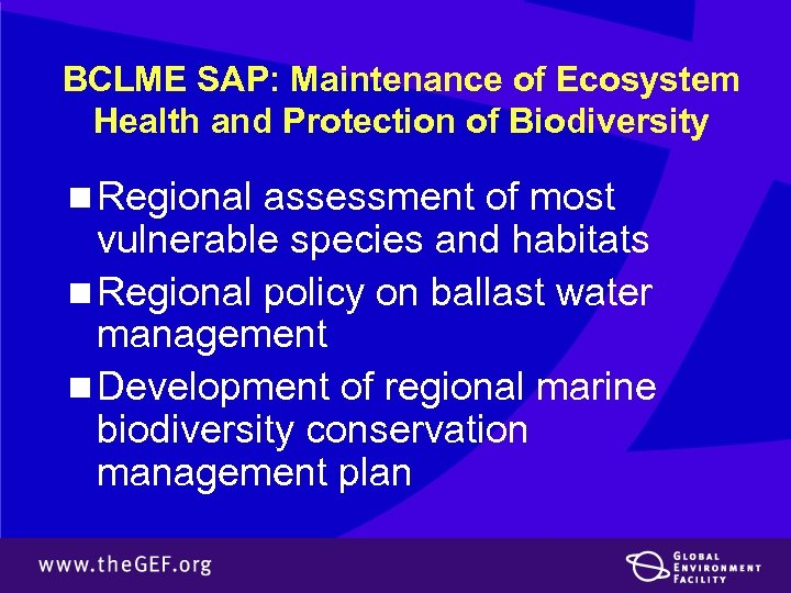 BCLME SAP: Maintenance of Ecosystem Health and Protection of Biodiversity n Regional assessment of