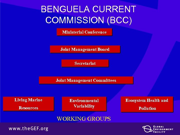BENGUELA CURRENT COMMISSION (BCC) Ministerial Conference Joint Management Board Secretariat Joint Management Committees Living