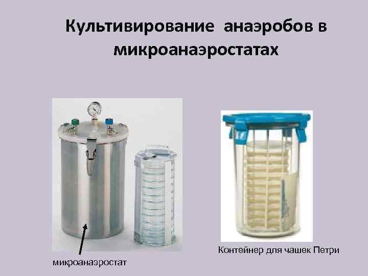 Культивирование анаэробов в микроанаэростатах Контейнер для чашек Петри микроанаэростат