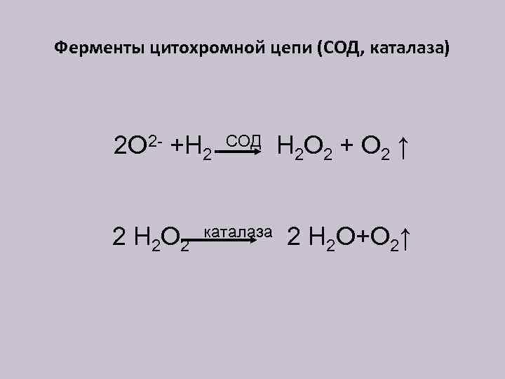 Ферменты цитохромной цепи (СОД, каталаза) 2 О 2 - +Н 2 2 Н 2