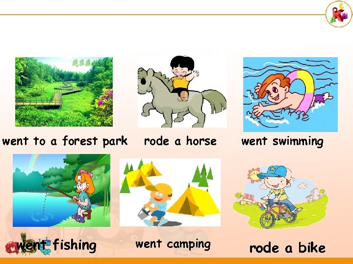 went to a forest park went fishing rode a horse went camping went swimming