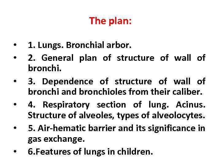The plan: • • • 1. Lungs. Bronchial arbor. 2. General plan of structure