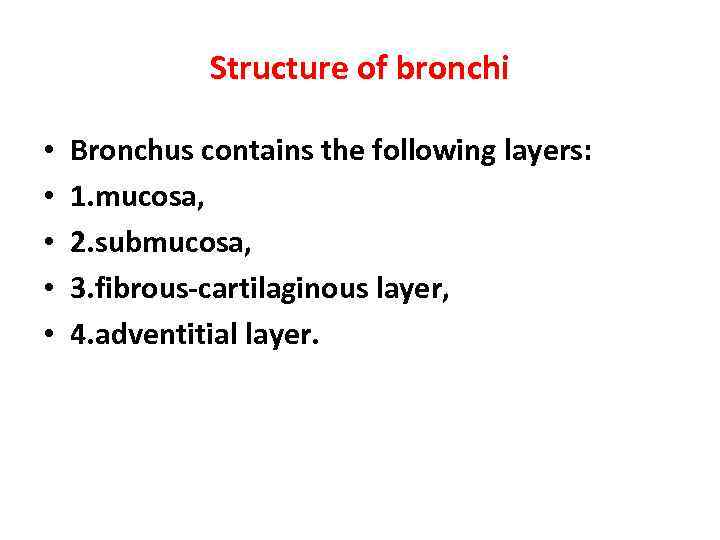 Structure of bronchi • • • Bronchus contains the following layers: 1. mucosa, 2.