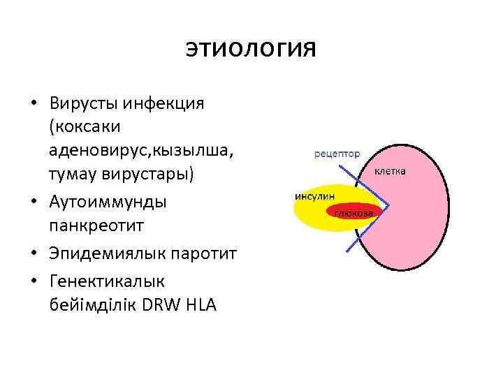 этиология • Вирусты инфекция (коксаки аденовирус, кызылша, тумау вирустары) • Аутоиммунды панкреотит • Эпидемиялык