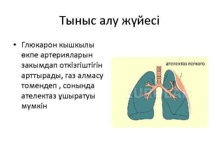 Тыныс алу жүйесі • Глюкарон кышкылы өкпе артерияларын закымдап откізгіштігін арттырады, газ алмасу томендеп