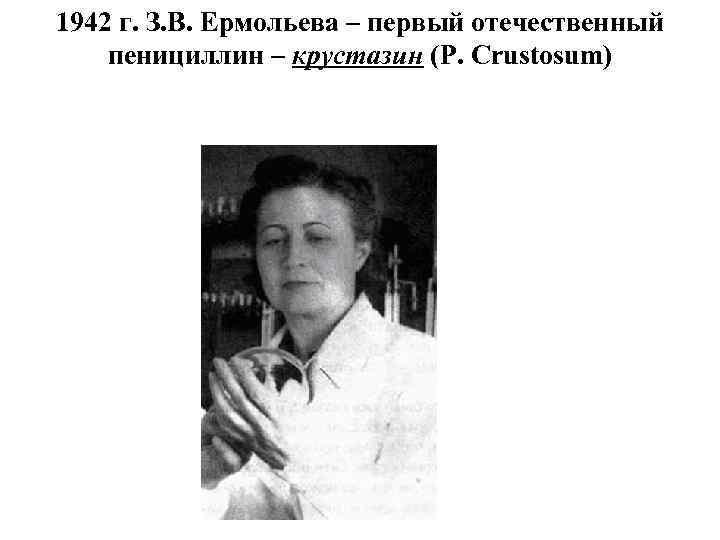1942 г. З. В. Ермольева – первый отечественный пенициллин – крустазин (P. Сrustosum)