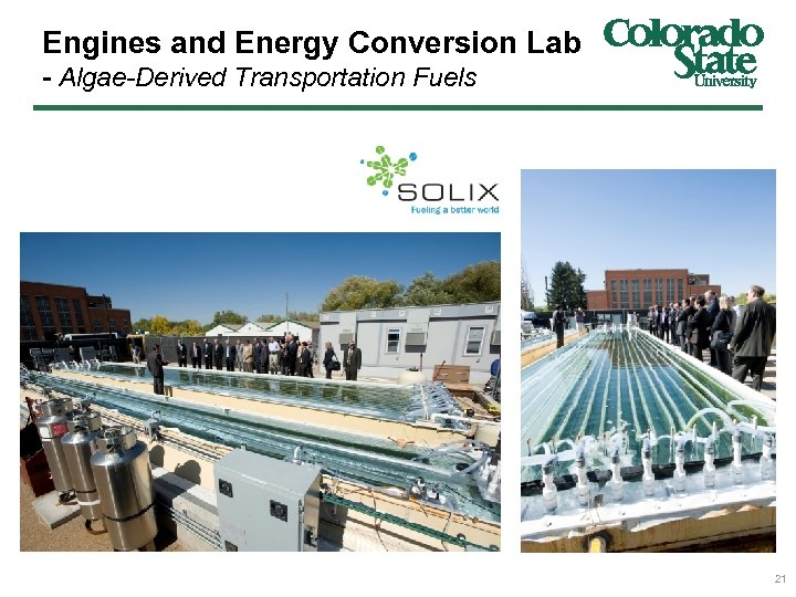 Engines and Energy Conversion Lab - Algae-Derived Transportation Fuels 21