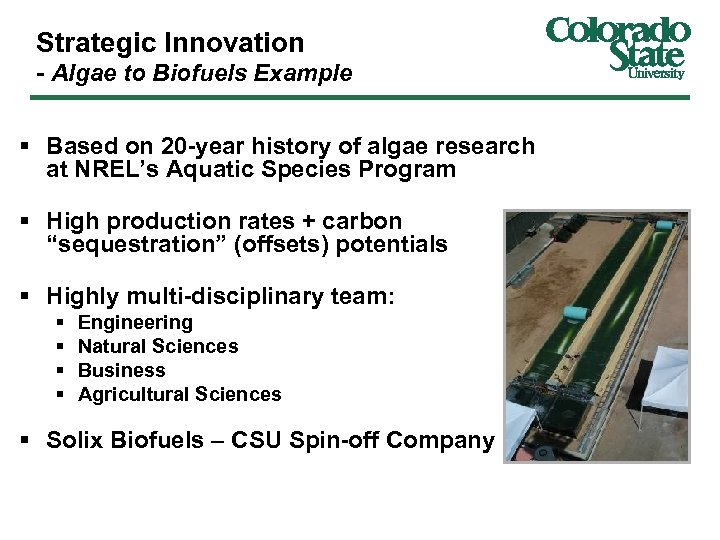 Strategic Innovation - Algae to Biofuels Example § Based on 20 -year history of