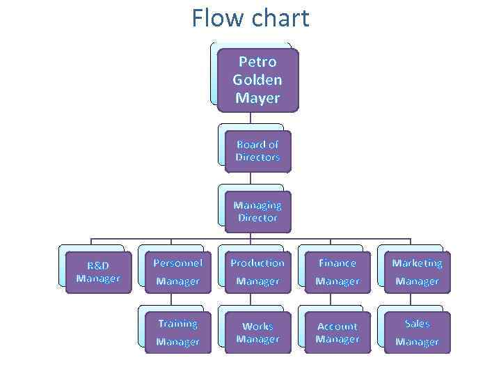 Flow chart Petro Golden Mayer Board of Directors Managing Director R&D Manager Personnel Manager