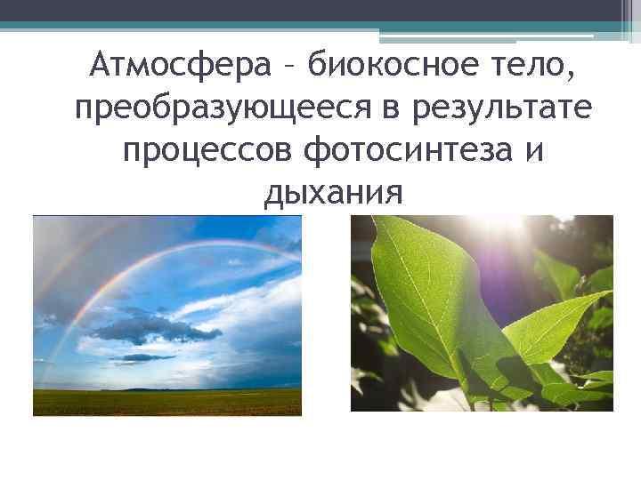 Атмосфера – биокосное тело, преобразующееся в результате процессов фотосинтеза и дыхания