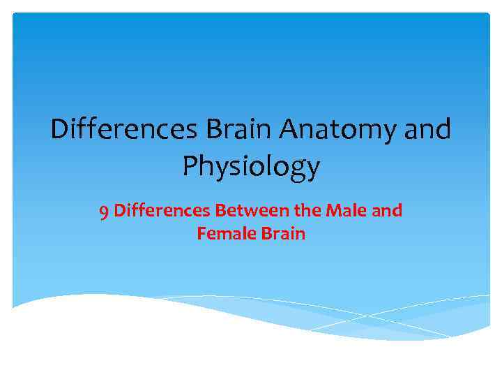 Differences Brain Anatomy and Physiology 9 Differences Between the Male and Female Brain