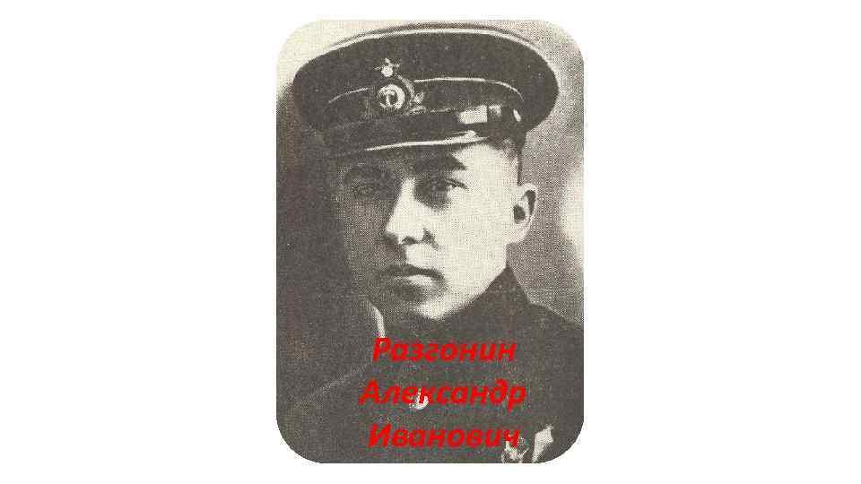 Разгонин Александр Иванович