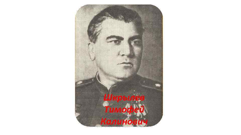 Шкрылев Тимофей Калинович