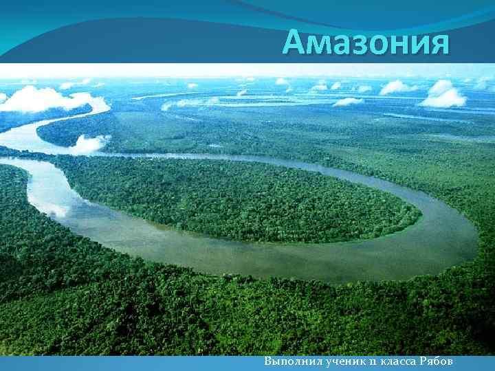 Амазония Выполнил ученик 11 класса Рябов