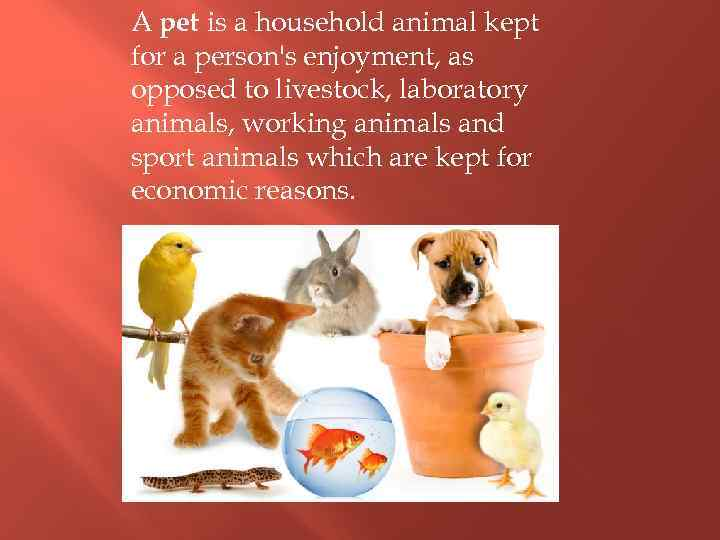 A pet is a household animal kept for a person's enjoyment, as opposed to