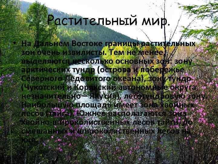 Растительный мир. • На Дальнем Востоке границы растительных зон очень извилисты. Тем не менее,