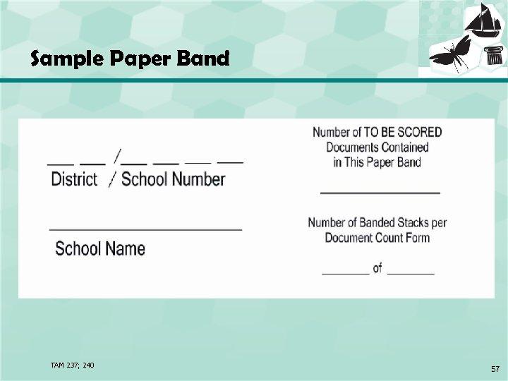 Sample Paper Band TAM 237; 240 57