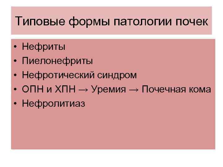 Типовые формы патологии почек • • • Нефриты Пиелонефриты Нефротический синдром ОПН и ХПН