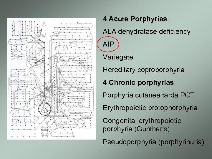 4 Acute Porphyrias: Porphyrias ALA dehydratase deficiency AIP Variegate Hereditary coproporphyria 4 Chronic porphyrias: