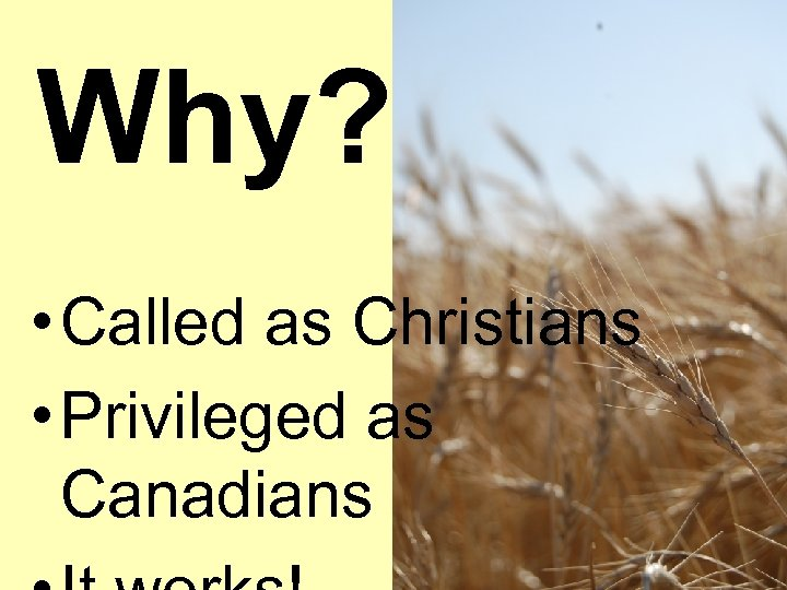 Why? • Called as Christians • Privileged as Canadians