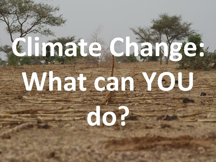 Climate Change: What can YOU do?