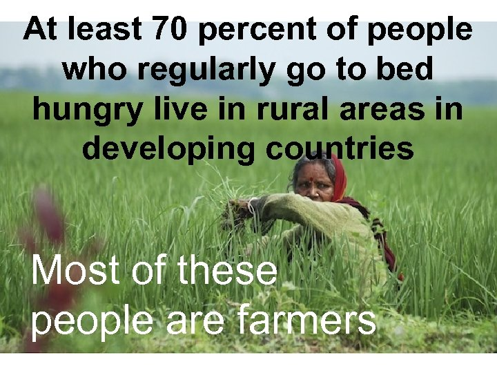 At least 70 percent of people who regularly go to bed hungry live in