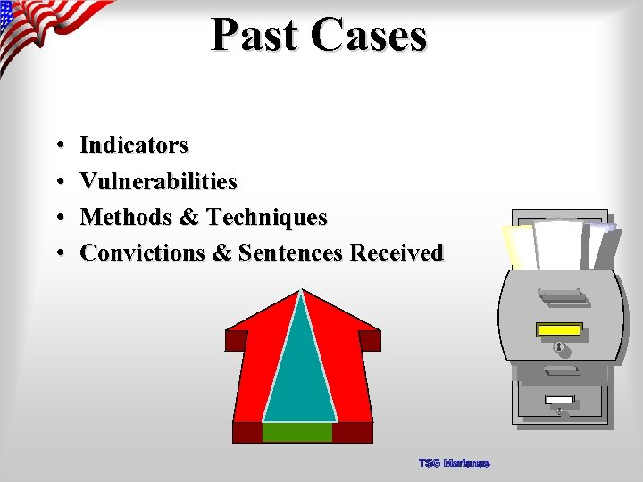 Past Cases • • Indicators Vulnerabilities Methods & Techniques Convictions & Sentences Received TSG