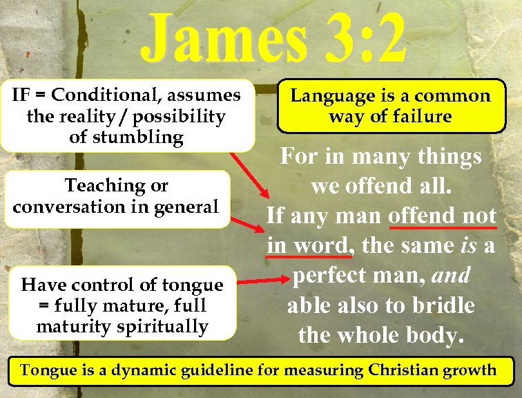 IF = Conditional, assumes the reality / possibility of stumbling Teaching or conversation in