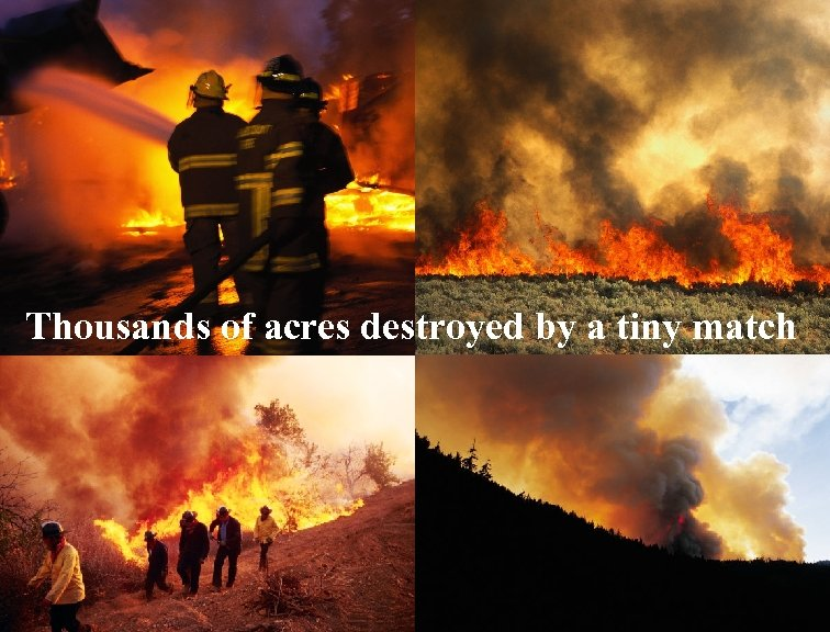 Thousands of acres destroyed by a tiny match