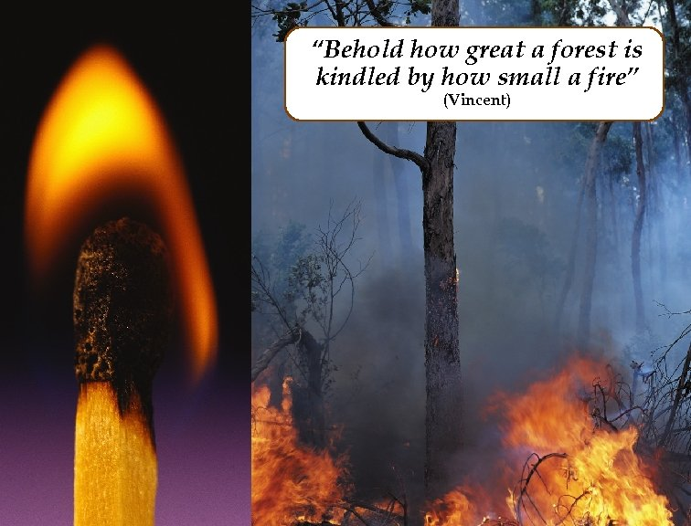 """""""Behold how great a forest is kindled by how small a fire"""" (Vincent)"""