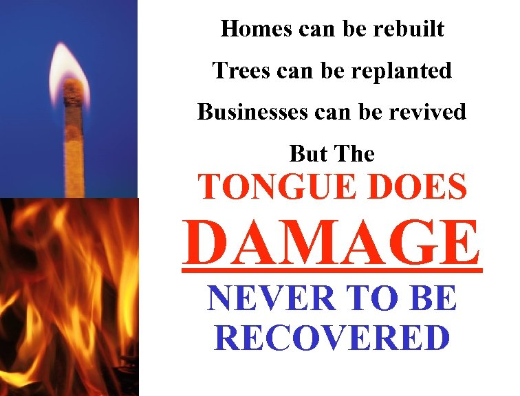 Homes can be rebuilt Trees can be replanted Businesses can be revived But The