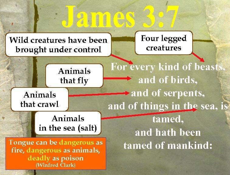Wild creatures have been brought under control Animals that fly Animals that crawl Animals