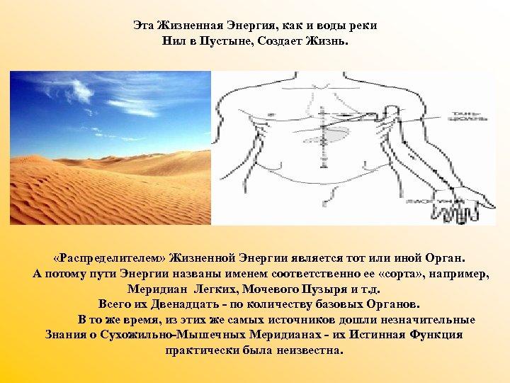 Эта Жизненная Энергия, как и воды реки Нил в Пустыне, Создает Жизнь. «Распределителем» Жизненной