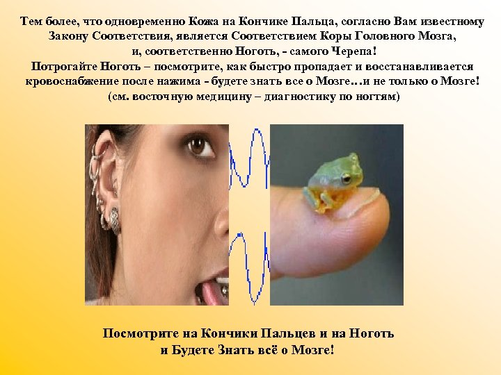 Тем более, что одновременно Кожа на Кончике Пальца, согласно Вам известному Закону Соответствия, является