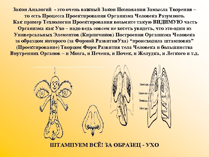 Закон Аналогий - это очень важный Закон Познавания Замысла Творения – то есть Процесса