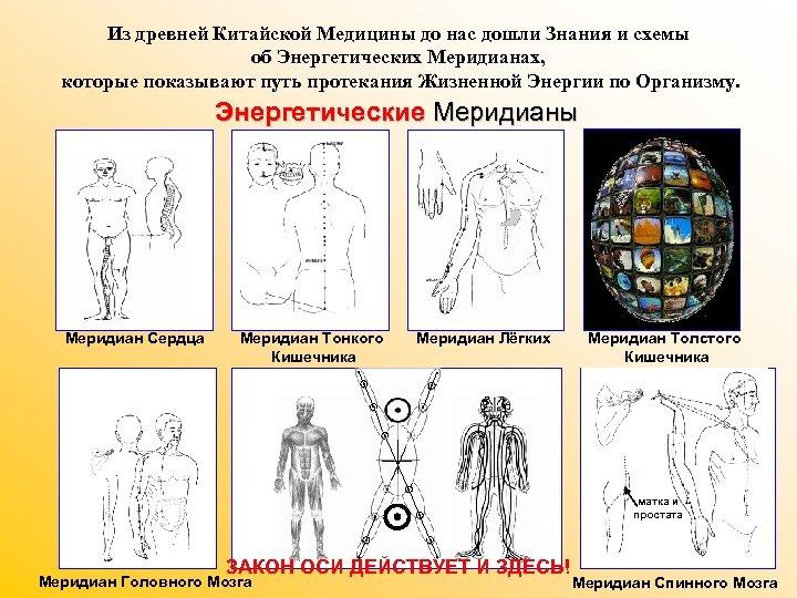 Из древней Китайской Медицины до нас дошли Знания и схемы об Энергетических Меридианах, которые