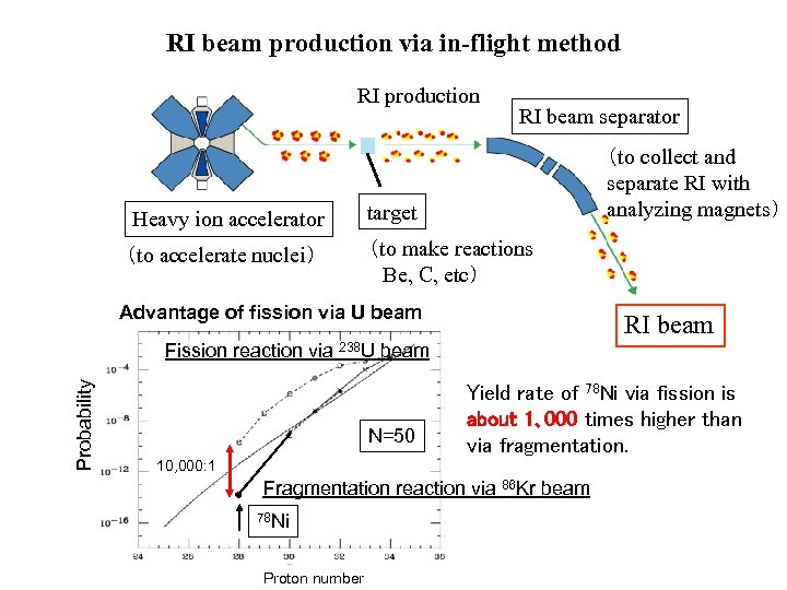 RI beam production via in-flight method RI production RI beam separator (to collect and
