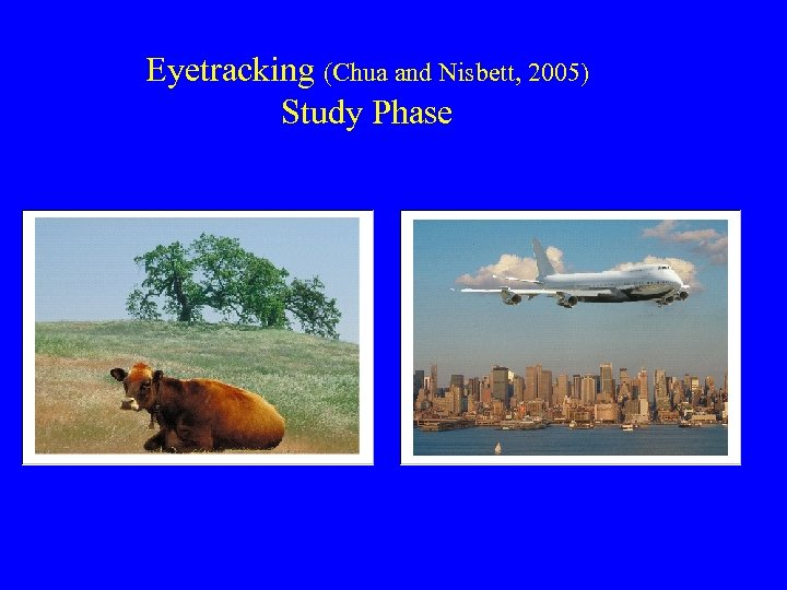 Eyetracking (Chua and Nisbett, 2005) Study Phase