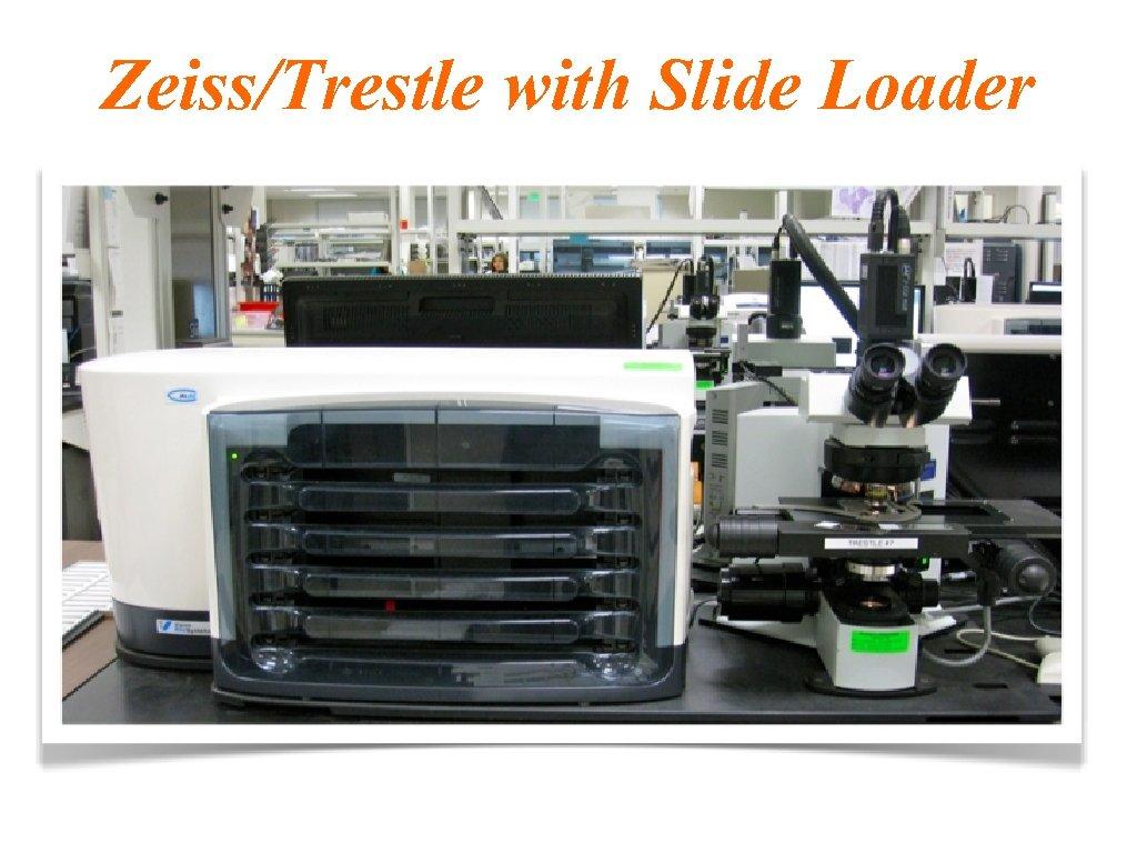 Zeiss/Trestle with Slide Loader